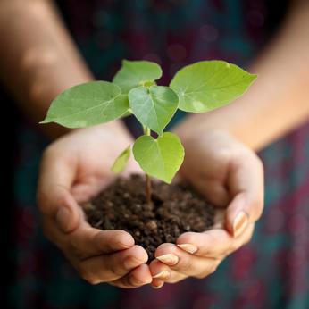 Comment déterminer la nature de votre sol ?