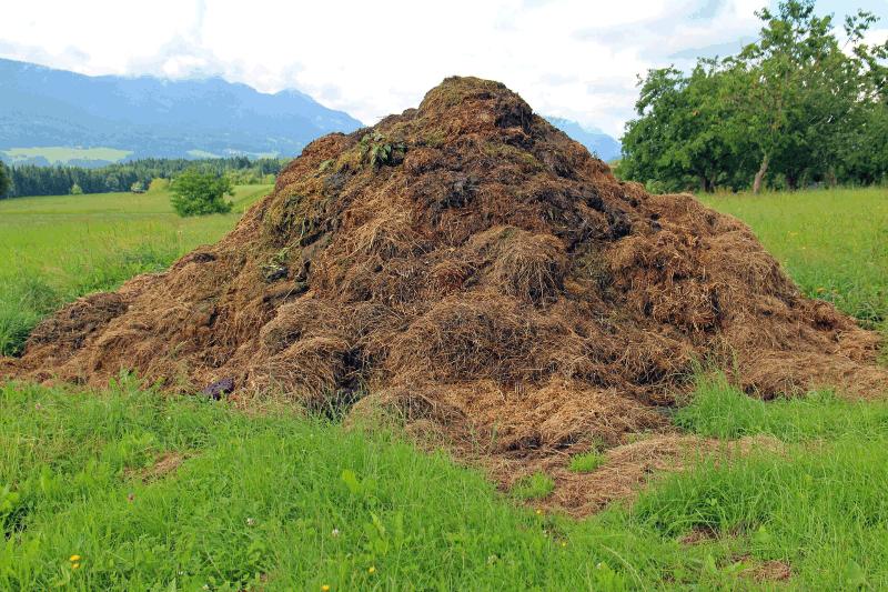 Le compostage sous tous les angles