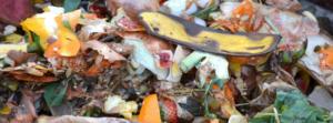 matériaux de compost
