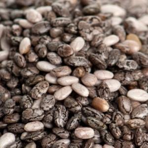 Quels sont les bienfaits nutritionnels des graines de Chia?