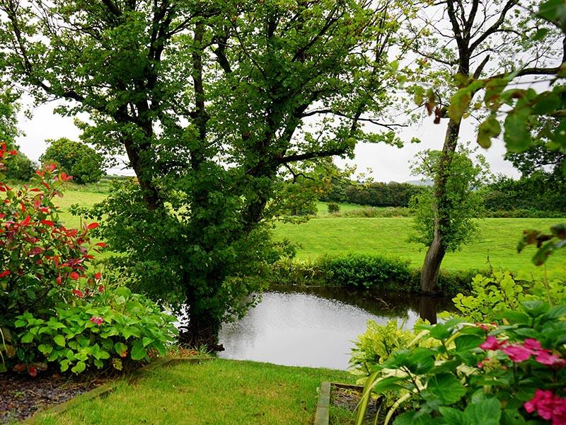 Créer son jardin paysager : par où commencer ?